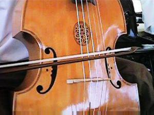 Gamba strings