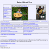 The Lute Page