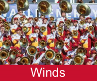Winds Section
